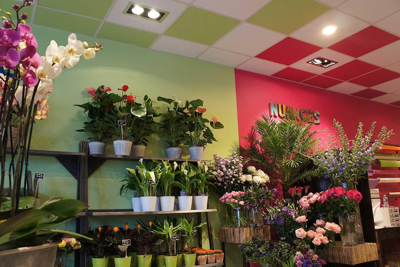 Aménagement d'un magasin de fleurs